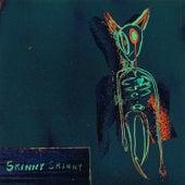 Skinny Skinny by Ashton Irwin