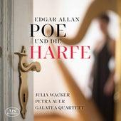 Edgar Allan Poe und die Harfe von Julia Wacker