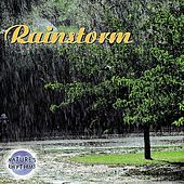Nature's Rhythms: Rainstorm [2004 Columbia River] by Nature's Rhythms
