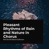 Pleasant Rhythms of Rain and Nature in Chorus by Rain Sounds Nature Collection