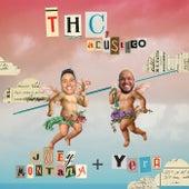 THC (Acústico) de Joey Montana