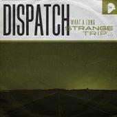 What a Long Strange Trip… by Dispatch
