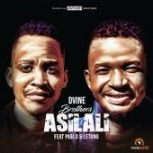Asilali de Dvine Brothers