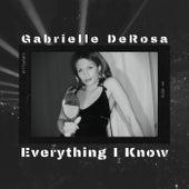 Everything I Know by Gabrielle DeRosa