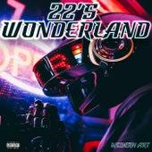 22's Wonderland by 22