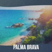 Palma Brava by Antonio Machin, Beny More, Georgia Gibbs, Gloria Lasso, Mickey Gilley, Stanley Black, Charles Trenet, Pio Leiva, Boxcar Willie