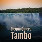 Elegua Quiere Tambo by Don Gibson, Manolo Caracol, Celia Cruz, Arsenio Rodriguez, Damiron, Kitty Wells, Juanito Valderrama, Abbe Lane, Antonio Machin