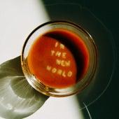 In the New World von Anthony da Costa