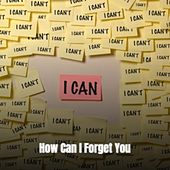 How Can I Forget You von Various Artists