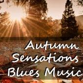 Autumn Sensations Blues Music by Various Artists