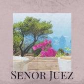Senor Juez by Pepe Marchena, Chavela Vargas, Beny More, Johnny Rivers, Orquesta Aragon, Doris Day, Los Huaracheros, Orquesta Estrellas Cubanas, Los Papines, Don Gibson