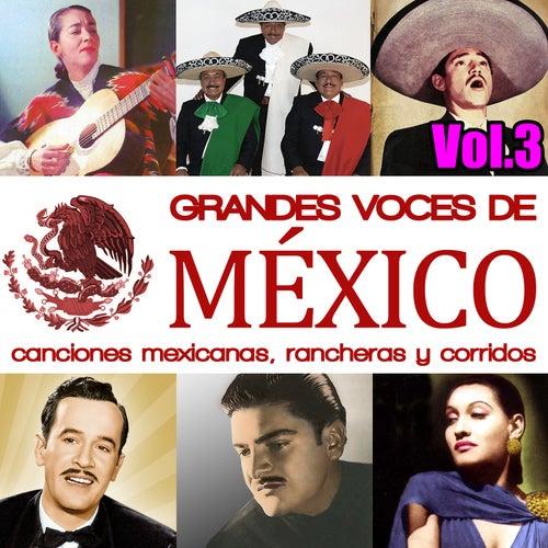 Grandes Voces de México. Canciones Mexicanas, Rancheras y Corridos Vol.3 by Various Artists