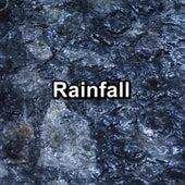 Rainfall de Sounds Of Nature