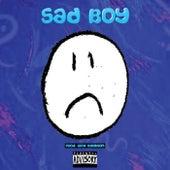 Sad Boy by A.K.A. Rome