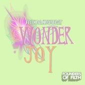 Wonderjoy de Felix Da Housecat