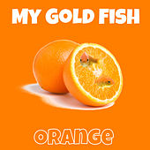 Orange by My Gold Fish