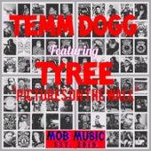 PICTURES von Temm Dogg
