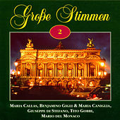Grosse Stimmen Vol. 2 de Various Artists