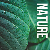 Nature de Sounds Of Nature