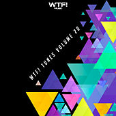 WTF! Tunes, Vol. 20 by Various Artists