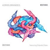 Meetings by Adrien Brandeis