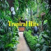 Tropical Hits de Fernando Villalona, Grupo Mania, Hector Acosta, Johnny Ventura