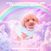 You Don't Know Me (Sidekick Remix) de Meghan Trainor