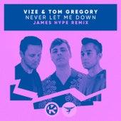 Never Let Me Down (James Hype Remix) de Vize