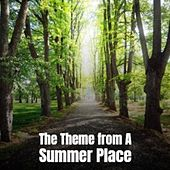 The Theme from a Summer Place de Percy Faith Augie Rios