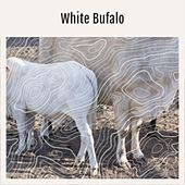 White Bufalo by Nicky B & Vic, 2-4 Grooves, Bison Meets The Quakers, AMERICAN NATIVIES, The Untitled
