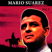 Moliendo Café Volume 2 by Mario Suarez