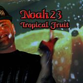 Tropical Fruit (House Remix) by Noah23