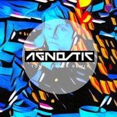 Tom's Diner (Remix) by Agnostic