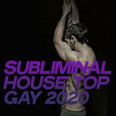 Subliminal House Top Gay 2020 de Various Artists