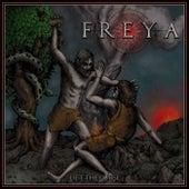 Lift the Curse by Freya