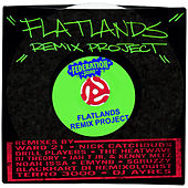 Flatlands Remix Project by Various Artists