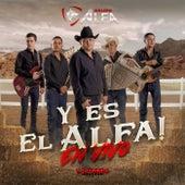 Y Es El Alfa  (En Vivo) by Grupo Alfa
