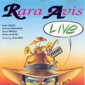 Live de RaRa Avis