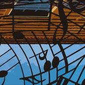 Slow Motion by Wayne Shorter