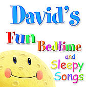 Fun Bedtime and Sleepy Songs For David by Various Artists