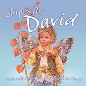 Sleep Softly David - Lullabies & Sleepy Songs by Various Artists