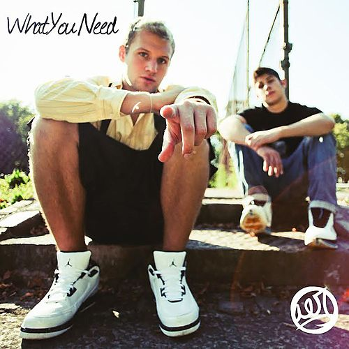 What You Need EP by AER