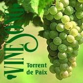 Torrent De Paix by Vinesong