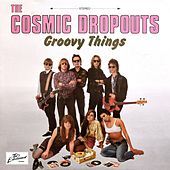 Groovy Things de Cosmic Dropouts