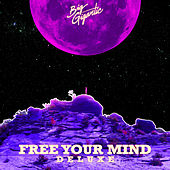 Free Your Mind (Deluxe Version) di Big Gigantic