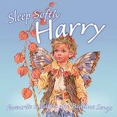 Sleep Softly Harry - Lullabies & Sleepy Songs by Various Artists