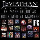 25 Years of Guitar Instrumental Madness de Various Artists
