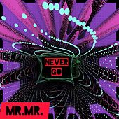 Never Go by Mr. Mister