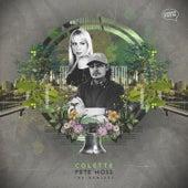 The Pete Moss Remixes von Colette