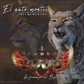 El Gato Montes (Instrumental) de Banda Lirio